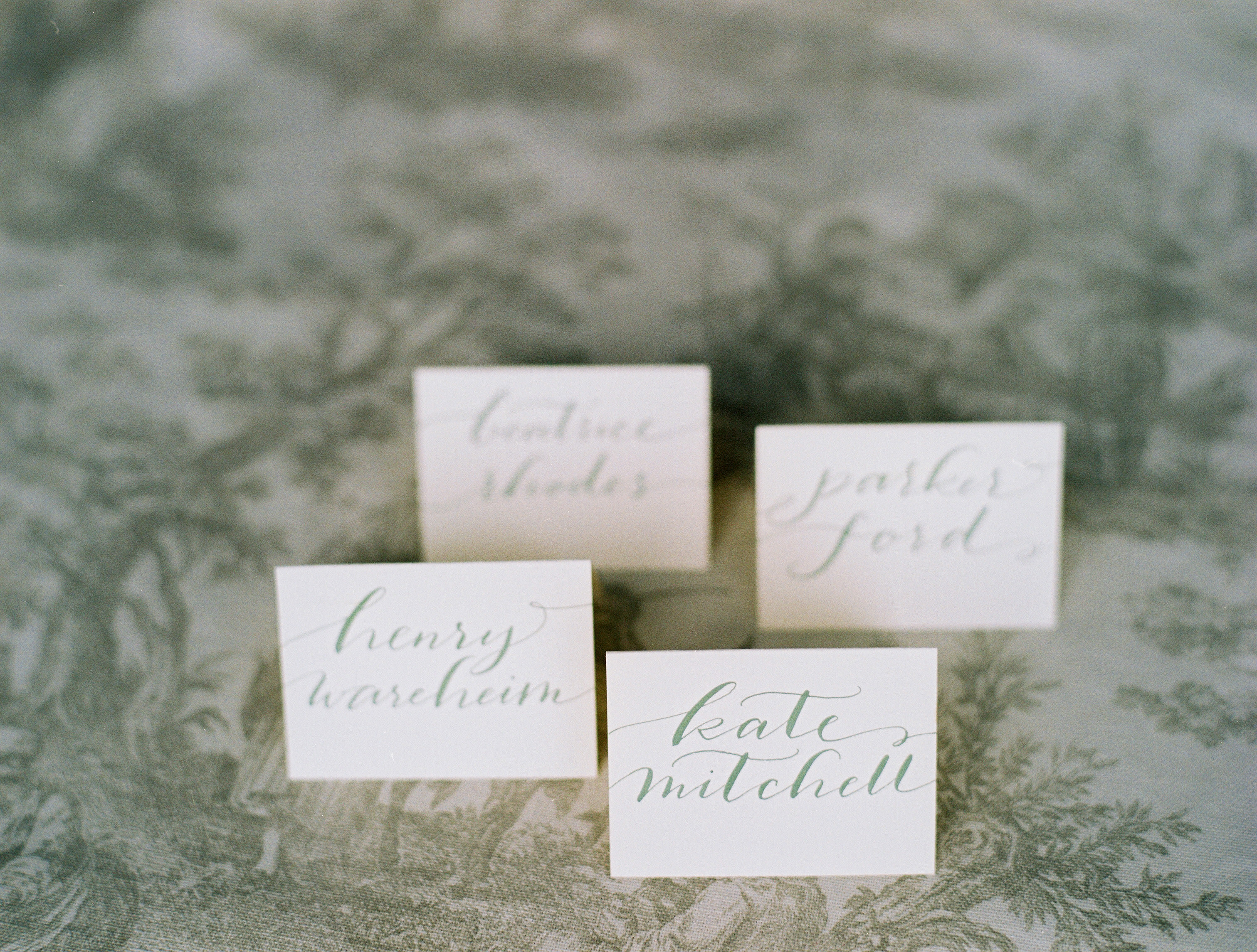 Elegant Castle Cliffs Wedding Inspiration Shoot from Laura Murray Photography