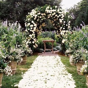 Y Opulent Wedding Arch