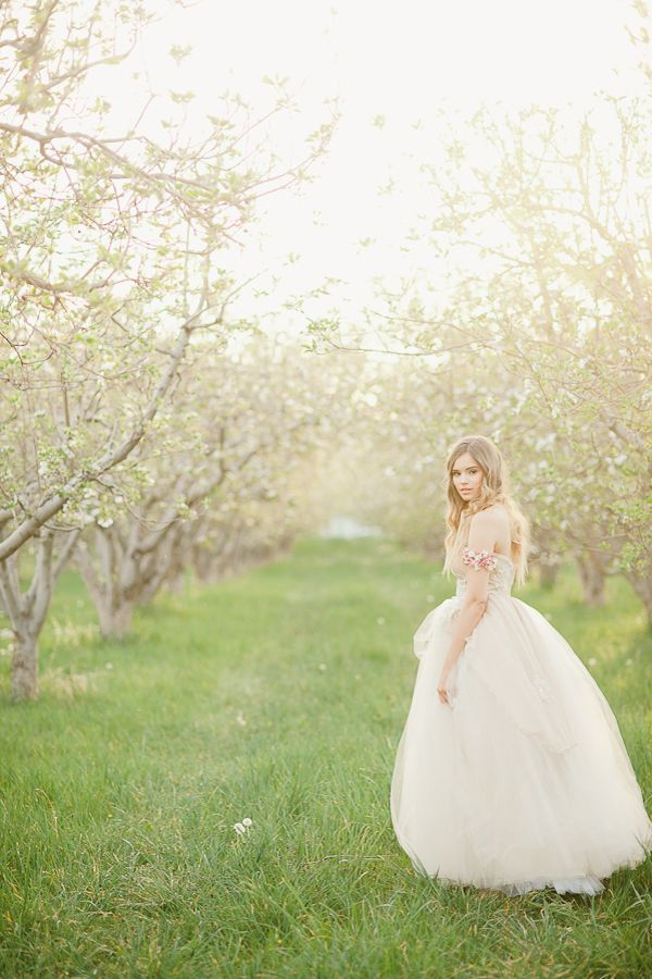 A Spring Wedding Venue Brimming with Blossom