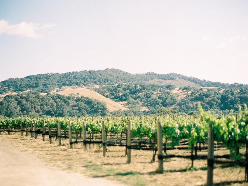 Olde World Romance at Sunstone Winery // Photography ~ Rachel Solomon Photography