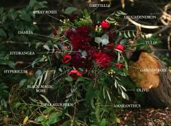 Bridal Bouquet Blooms