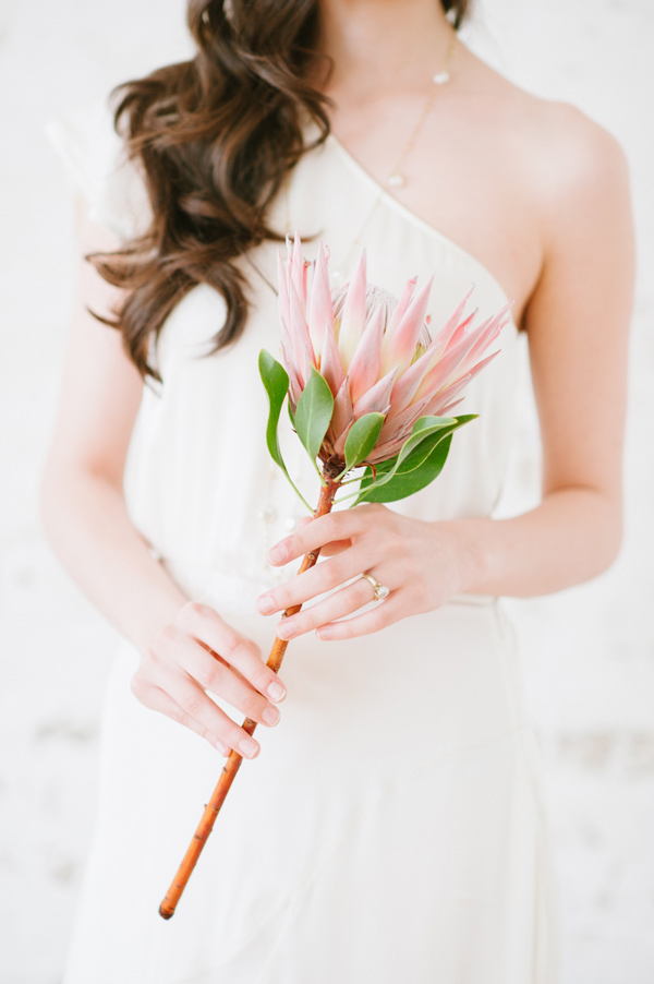 Protea Single Stem Bouquet