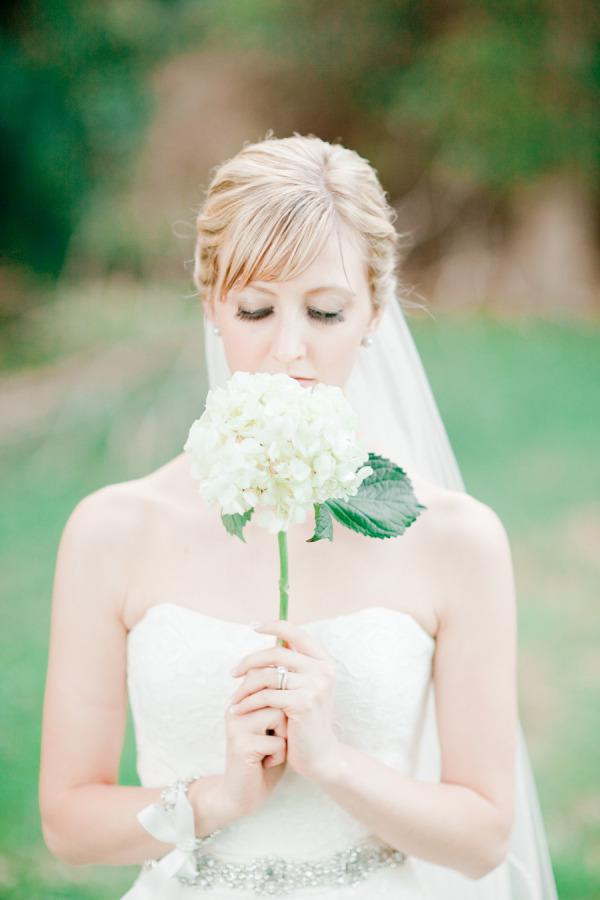 White Hydrangea Single Stem Bouquet