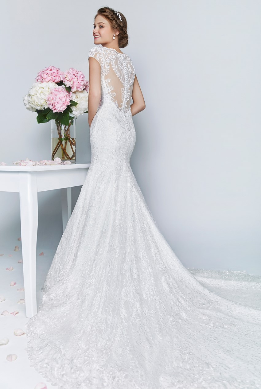 Wedding Dress with Long Train ~ Rico A Mona