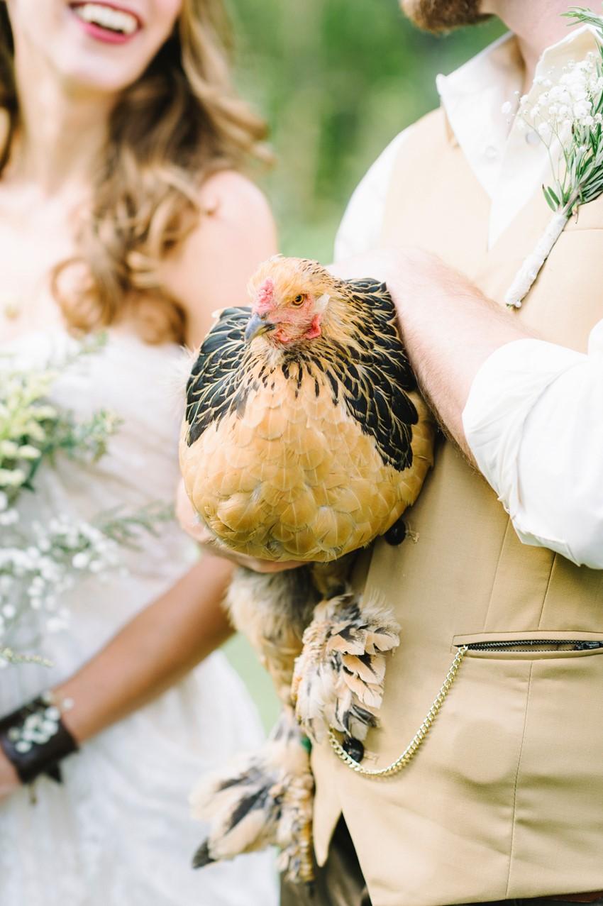 Chicken at a Wedding