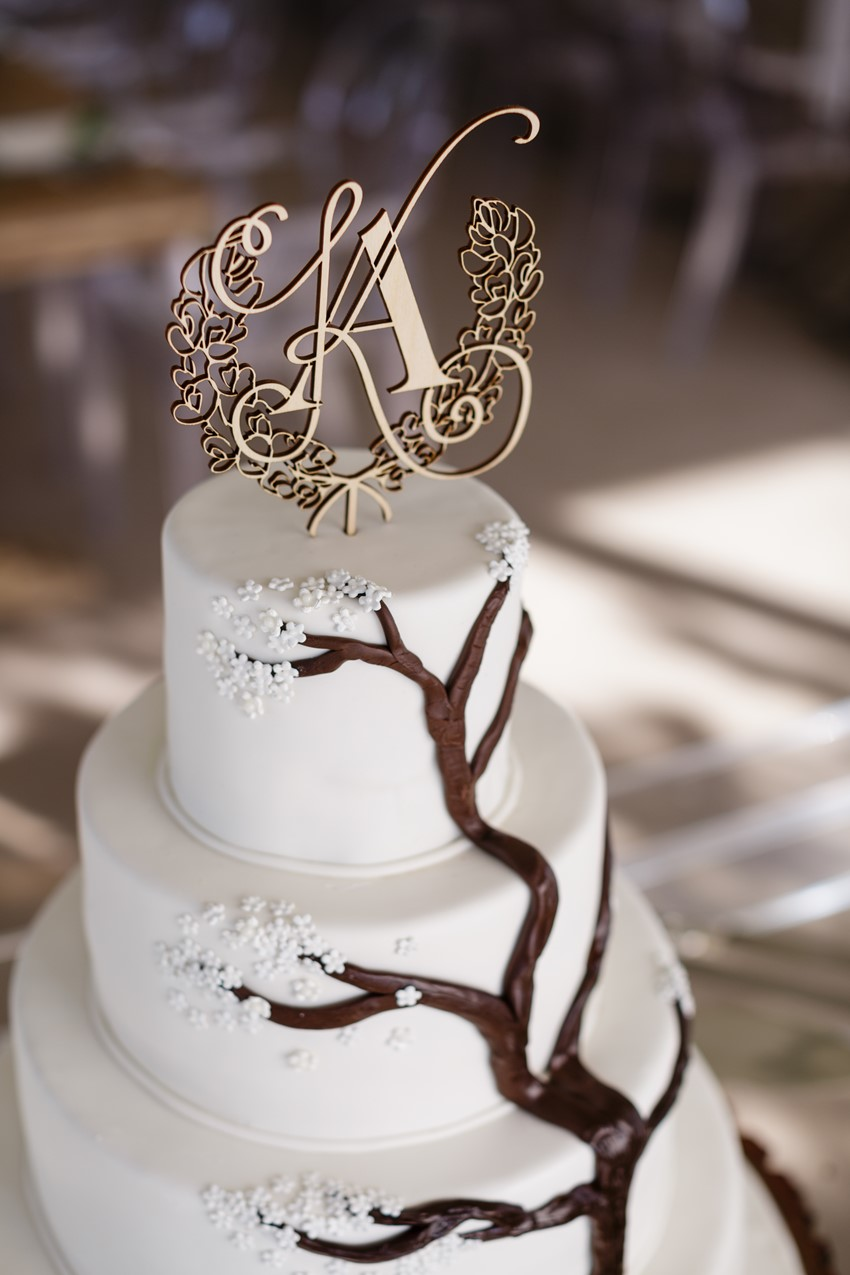 Tree Wedding Cake and Lasercut Topper