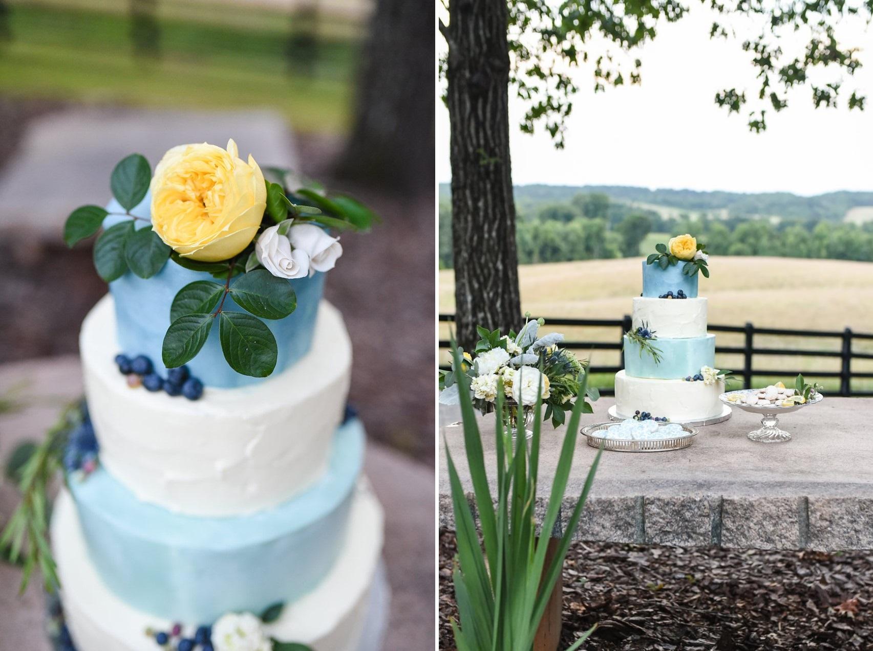 Blue Painted Wedding Cake