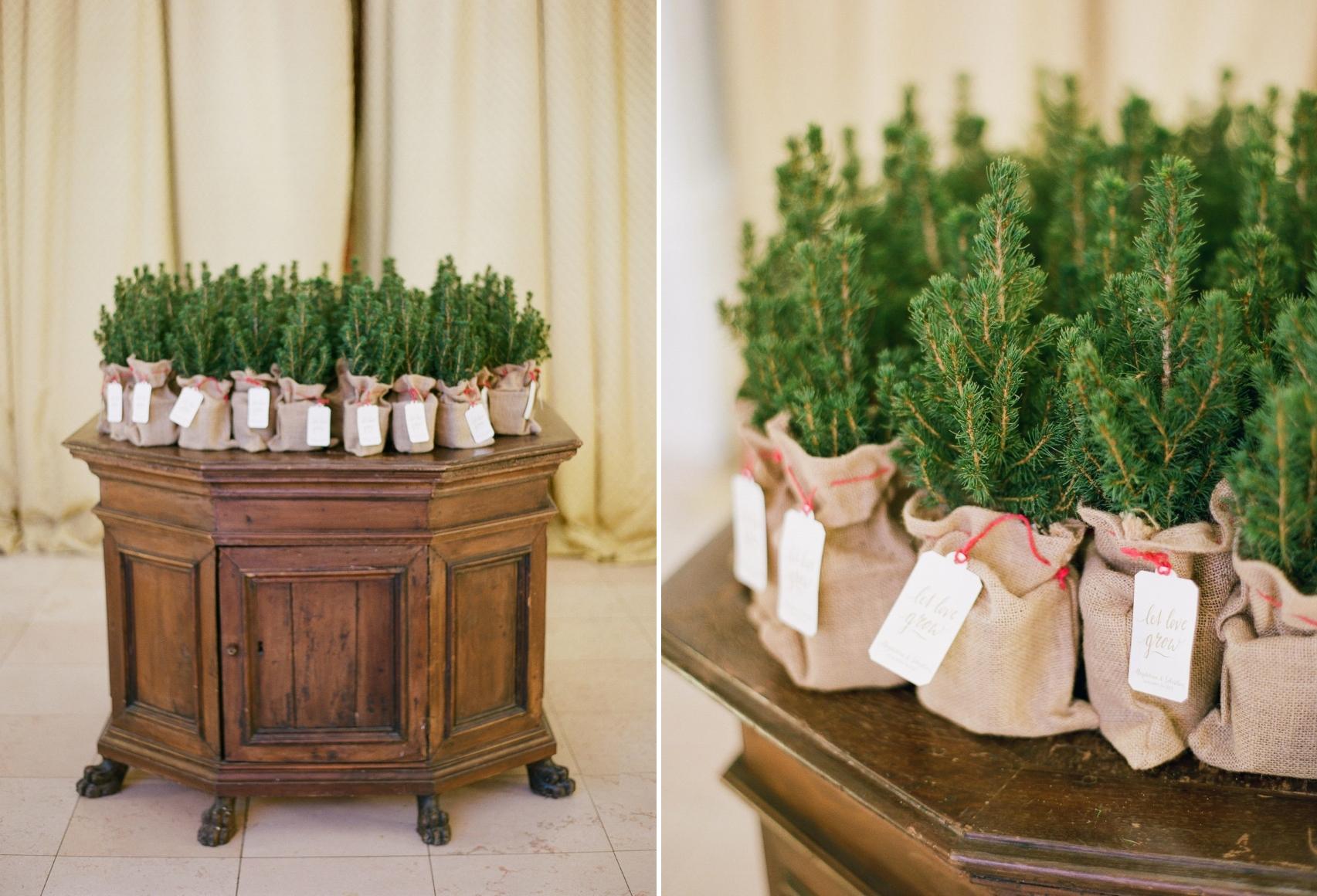 Christmas Tree wedding Favours